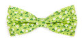 Green bow tie with a pattern with summer flowers Royalty Free Stock Photo