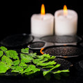 Green branch Adiantum fern with drops and candles on zen basalt Royalty Free Stock Photo