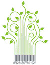 Green branches with barcode Stock Photos