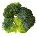 Green broccoli isolated on white top view vector illustration Royalty Free Stock Photo