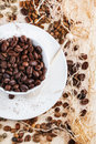 Green brown and black coffee beans decaf unroasted cup of roasted on wooden table with chips top view Royalty Free Stock Photos