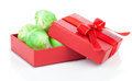 Green brussels sprouts in the red gift box on a white background Stock Image