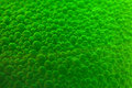 Green bubbles Royalty Free Stock Photo