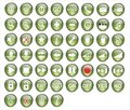 Green button pack Royalty Free Stock Photo