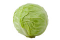 Green cabbage isolated on white background Royalty Free Stock Photo