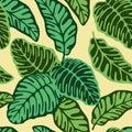 Green calathea leaves tropical seamless pattern