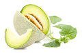 Green cantaloupe melon isolated and leaves on on white Royalty Free Stock Photography