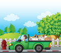 A green car along the street with dogs at the back illustration of Royalty Free Stock Photography