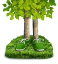 Green carbon footprint concept environmental trees with shoes isolated Royalty Free Stock Images