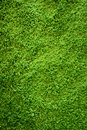 Green carpet texture background floor Royalty Free Stock Image