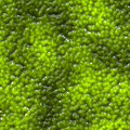 Green caviar Royalty Free Stock Photography