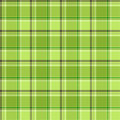 Green checks Royalty Free Stock Image
