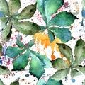 Green chestnut leaf. Leaf plant botanical garden floral foliage. Seamless background pattern. Royalty Free Stock Photo