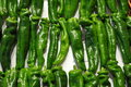 Green Chili Peppers Stock Photos