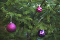 Green Christmas Tree With Colorful Ball Ornaments Royalty Free Stock Photo