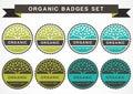 Green circle tree, vector logo design template. Set of organic p Royalty Free Stock Photo
