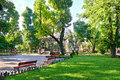 Green city park at center town, summer season, bright sunlight and shadows, beautiful landscape, home and people on street Royalty Free Stock Photo