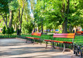 Green city park, summer season, bright sunlight and shadows, beautiful landscape, home and people on street Royalty Free Stock Photo