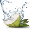 Green coconut with water splash isolated on white Royalty Free Stock Photography