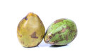 Green coconuts beautiful shot of on white background Stock Images