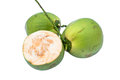 Green coconuts over white background Royalty Free Stock Images