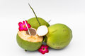 Green coconuts over white background Stock Image