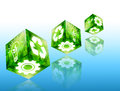 Green concept with cube image. Royalty Free Stock Image