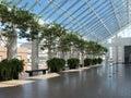 Green corridor Royalty Free Stock Photo