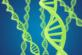 Green DNA helices on a blue background Royalty Free Stock Photo