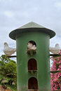 Green dovecote shot in montagu western cape south africa Stock Photography