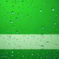 Green drops background Stock Images