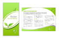 Green eco background leaflet with topic and leaves for web or print Stock Image