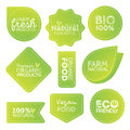 Green Eco Food Labels. Health Headings. Vector Illustration Collection Royalty Free Stock Photo