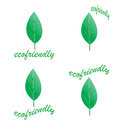 Green eco friendly set logos Royalty Free Stock Photos