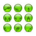Green eco glass leaf web icons Royalty Free Stock Image