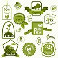 Green eco labels farm fresh natural products organic food set isolated vector illustration Stock Photography