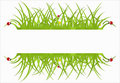 Green ecological banner Royalty Free Stock Photos