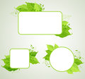 Green ecology banners with leaves Stock Photos