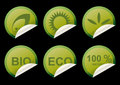 Green ecology stickers Royalty Free Stock Images