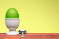 Green egg in white egg cup Stock Images