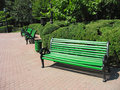 Green empty bench in the park Royalty Free Stock Photography