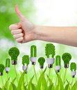 Green energy concept hand with thumb up and eco bulbs Stock Photos