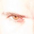 Green eye closeup Royalty Free Stock Photo