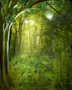 Green Fantasy Background Stock Images