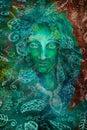 Green Fantasy Fairy Spirit Wit...