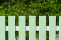 Green fence and bamboo tree in background Stock Photo