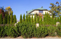 Green fence of trees and shrubs the villa behind the sunny day Stock Images