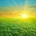 Green field and beautiful sunset Stock Photo