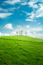 Green field and blue sky with flower structure Stock Photos