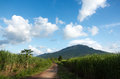 Green field and blue sky gravel road crops mountain scenery Royalty Free Stock Image